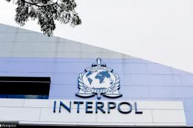 Во операција на Интерпол на Балканот спасени десетици жртви на трговија со луѓе