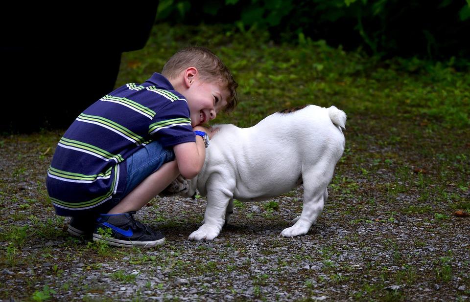 дете куче