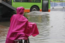 Над 30 лица го загубија животот во поплавите во Бразил