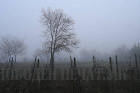Временска прогноза: Умерено облачно со магла во котлините