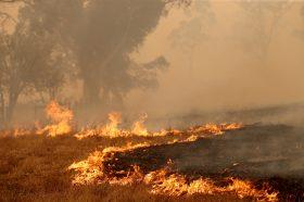 Три четвртини од австралиските граѓани се погодени од пожарите во земјата