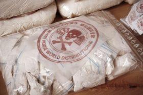 Запленети 100 килограми кокаин во Данска, уапсени 27 лица