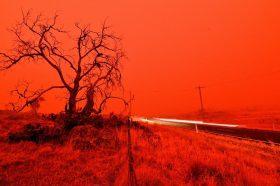 Традицијата на Абориџините е спасот за Австралија