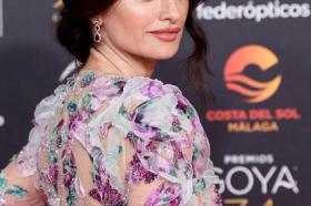 Пенелопе Круз мами воздишки во фантастичен цветен фустан! (ФОТО)