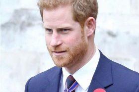 Нов гаф во кралското семејство: Официјалната интернет страница се претвори во страница за возрасни (ФОТО)