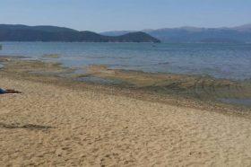 Долгата суша причина за најголемото опаѓање на Преспанското Езеро