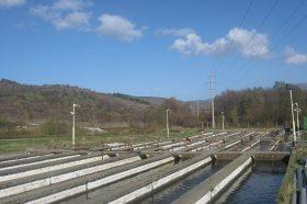 Бабовски: На располагање нови средства за модернизација и развој на рибарството и аквакултурата во земјава